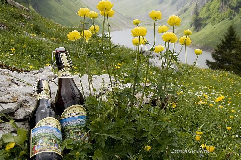 appenzell-beer Аппенцель (Appenzell), Швейцария - путеводитель по городу от ZurichGuide.ru, фото. Как добраться в Аппенцель, что посмотреть в Аппенцеле, кухня Аппенцеля