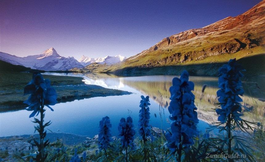 Grindelwald-bachalpsee